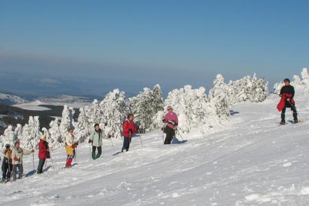 Activités hivernales en Haute-Loire